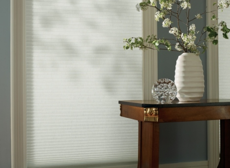 Minnesota window treatments