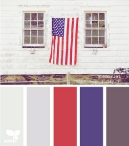 flag day color palette