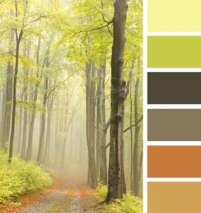 fresh color schemes
