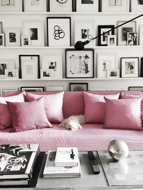 rose-quartza-sofa-with-a-dog